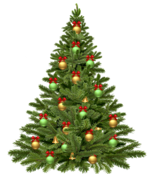 christmas-tree-1808558_960_720.png