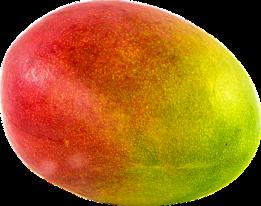 mango-1218147__340.png