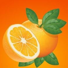 orange-832279__340