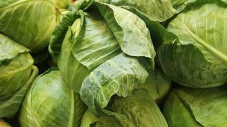 cabbage-1353192__340.jpg